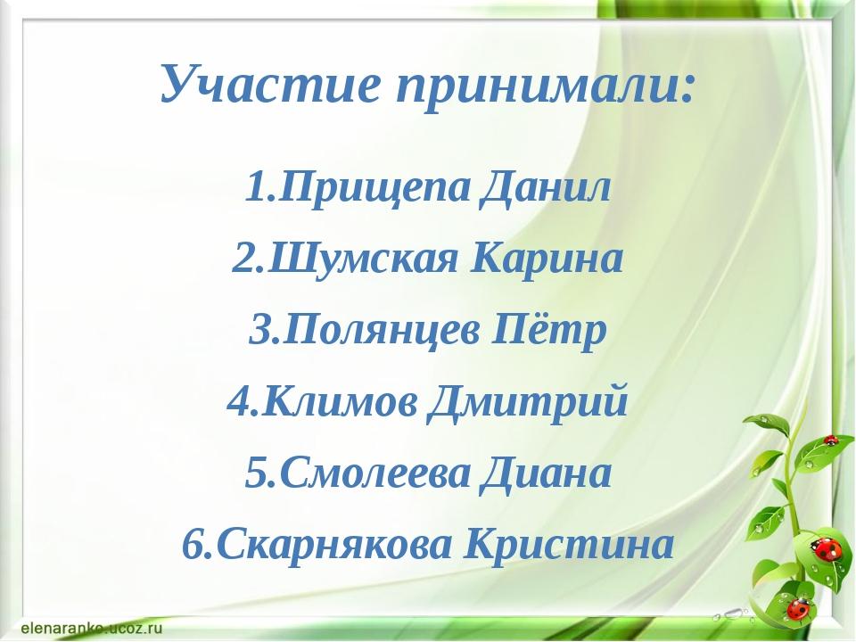 Участие принимали: 1.Прищепа Данил 2.Шумская Карина 3.Полянцев Пётр 4.Климов...