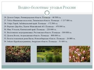 Водно-болотные угодья России 26. Дельта Свири, Ленинградская область. Площадь