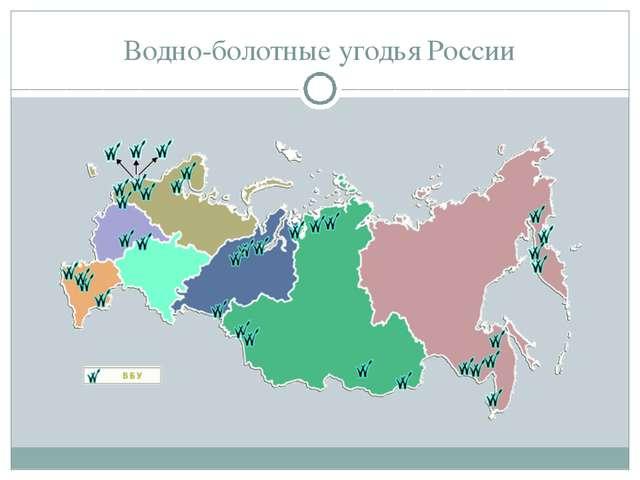 Водно-болотные угодья России