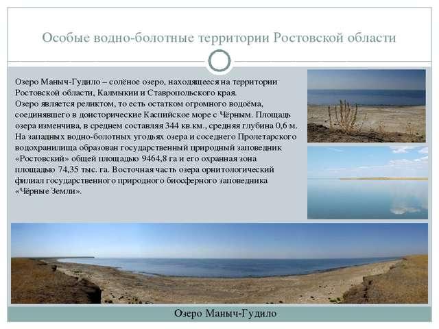 Особые водно-болотные территории Ростовской области Озеро Маныч-Гудило Озеро...