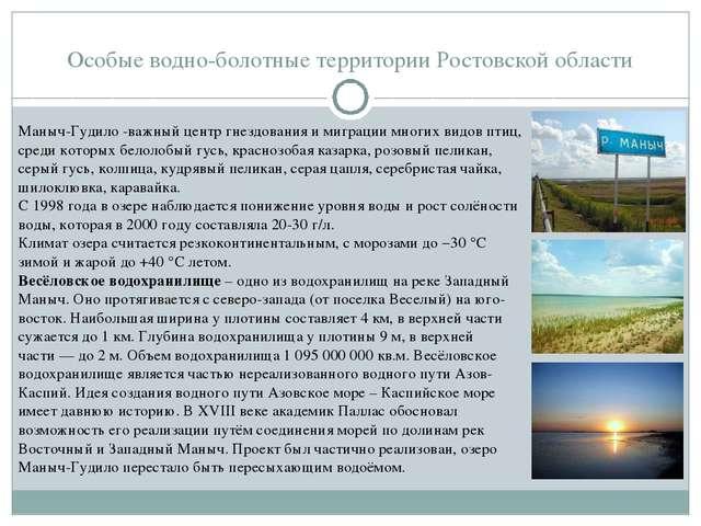 Особые водно-болотные территории Ростовской области Маныч-Гудило -важный цент...