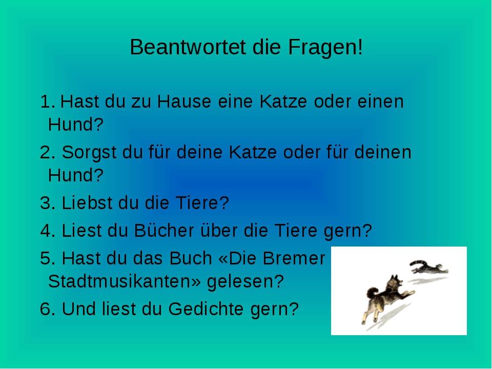 Beantwortet die Fragen! 1. Hast du zu Hause eine Katze oder einen Hund? 2. So...
