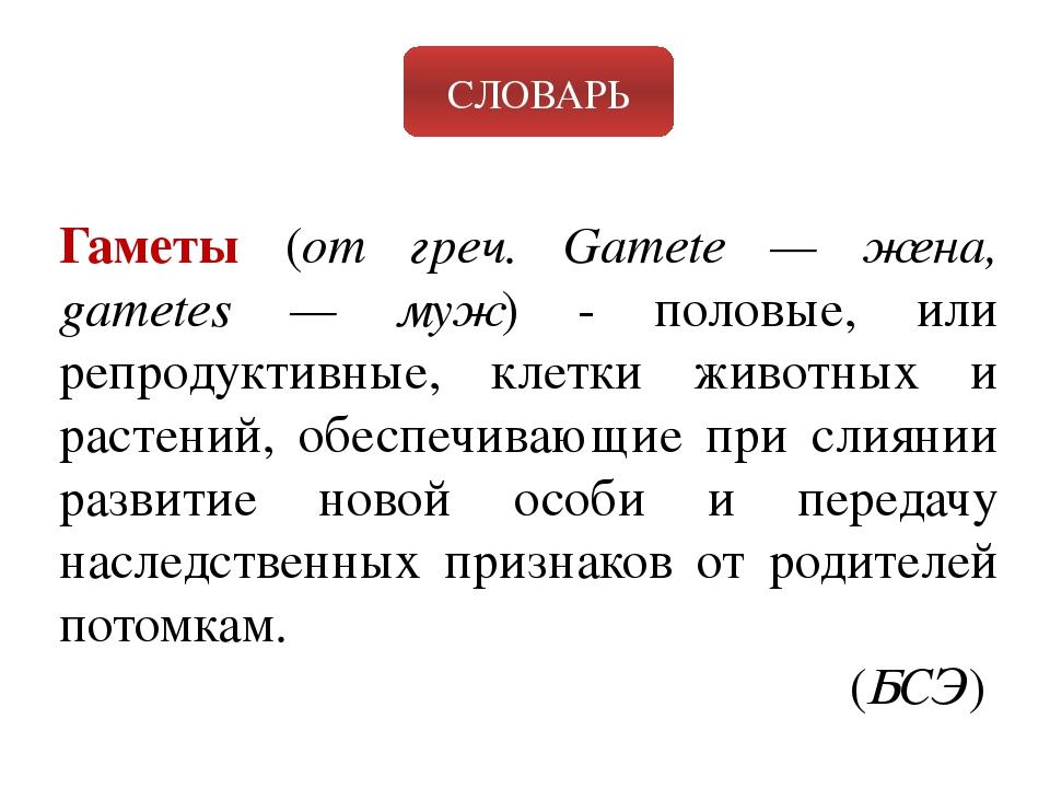 СЛОВАРЬ Гаметы (от греч. Gamete — жена, gametes — муж) - половые, или репроду...