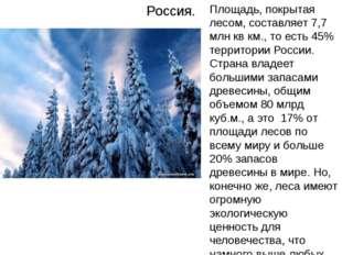 Россия. Площадь, покрытая лесом, составляет 7,7 млн кв км., то есть 45% терри