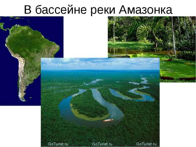 В бассейне реки Амазонка