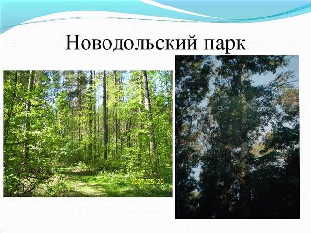 Новодольский парк