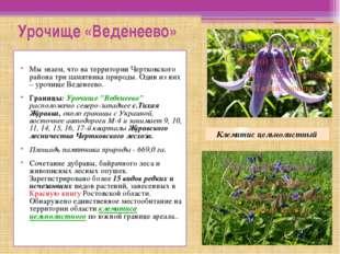 Урочище «Веденеево» Мы знаем, что на территории Чертковского района три памя