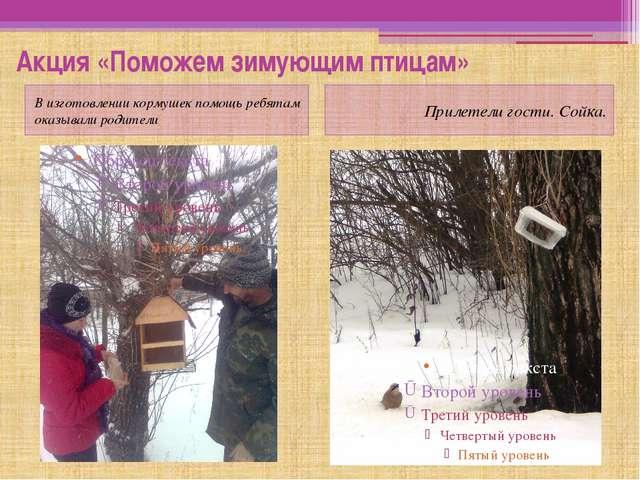 Акция «Поможем зимующим птицам» В изготовлении кормушек помощь ребятам оказыв...