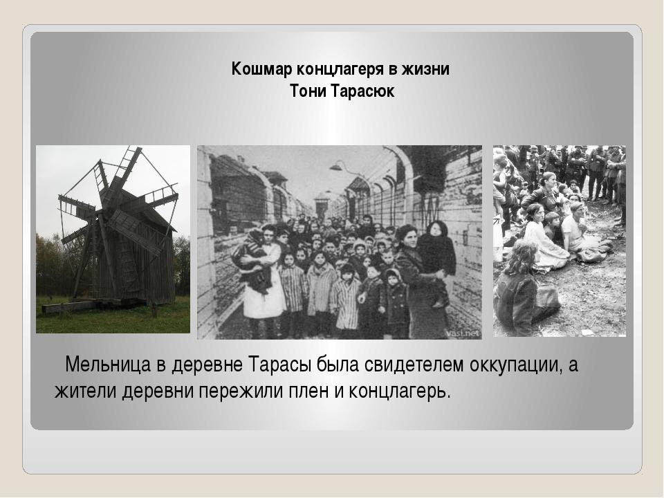 Кошмар концлагеря в жизни Тони Тарасюк Мельница в деревне Тарасы была свидет...