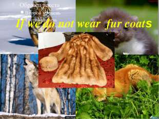 If we do not wear fur coats