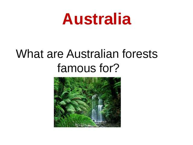 Australia What are Australian forests famous for?
