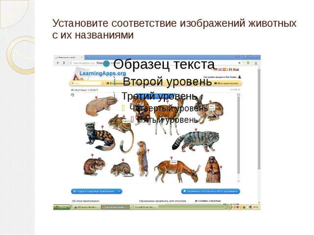 Установите соответствие изображений животных с их названиями