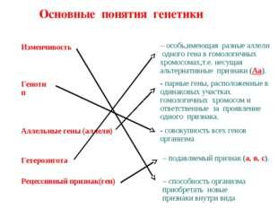 Основные понятия генетики Изменчивость Генотип Аллельные гены (аллели) Гетеро