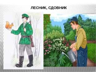 ЛЕСНИК, СДОВНИК