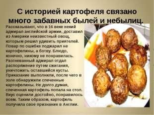 С историей картофеля связано много забавных былей и небылиц. Рассказывают, чт