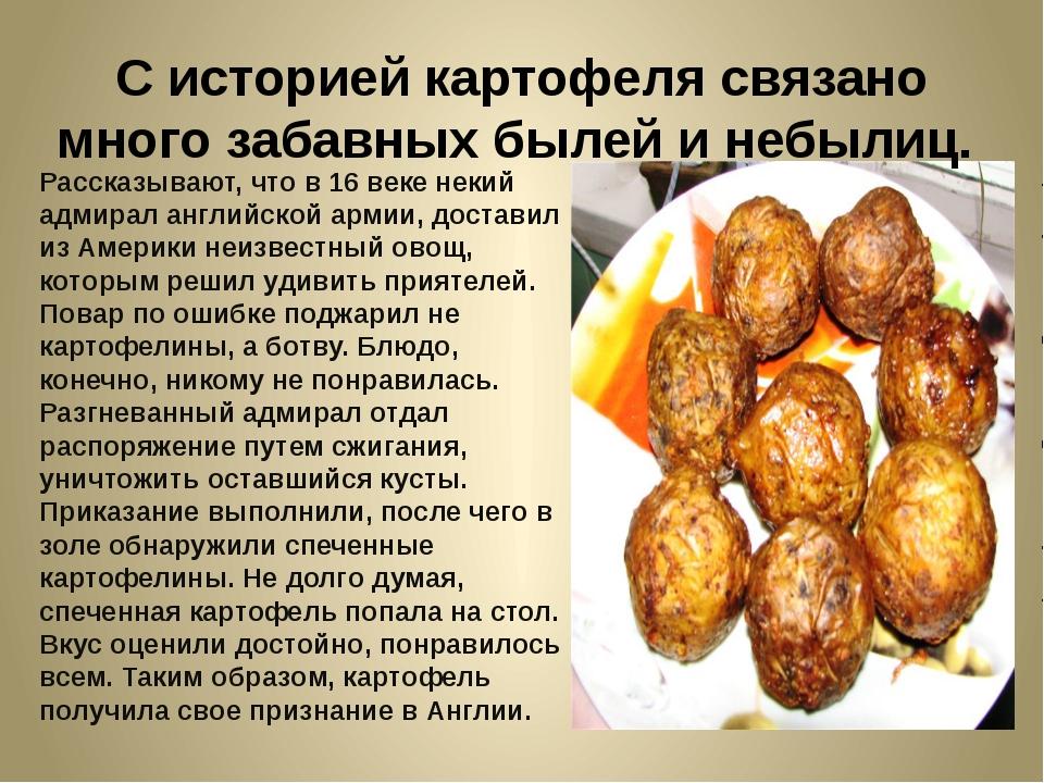 С историей картофеля связано много забавных былей и небылиц. Рассказывают, чт...