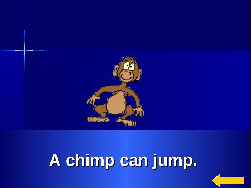 A chimp can jump.