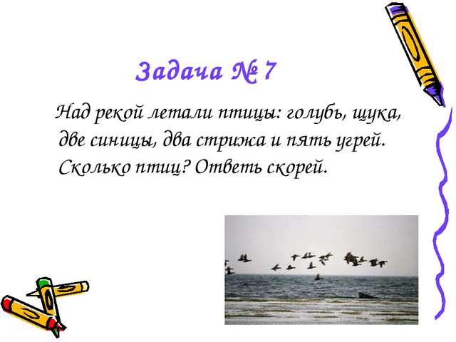 Задача № 7 Над рекой летали птицы: голубь, щука, две синицы, два стрижа и пят...