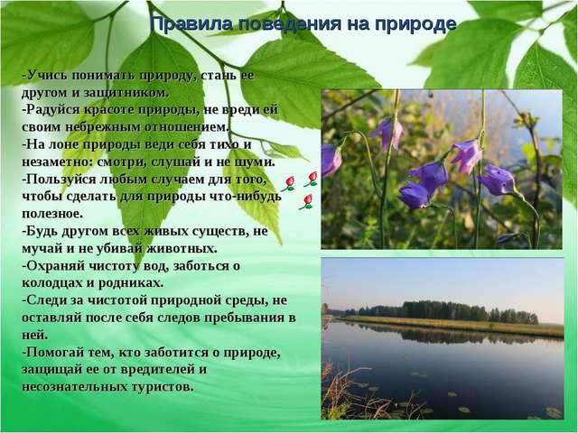 Правила поведения на природе -Учись понимать природу, стань ее другом и защит...