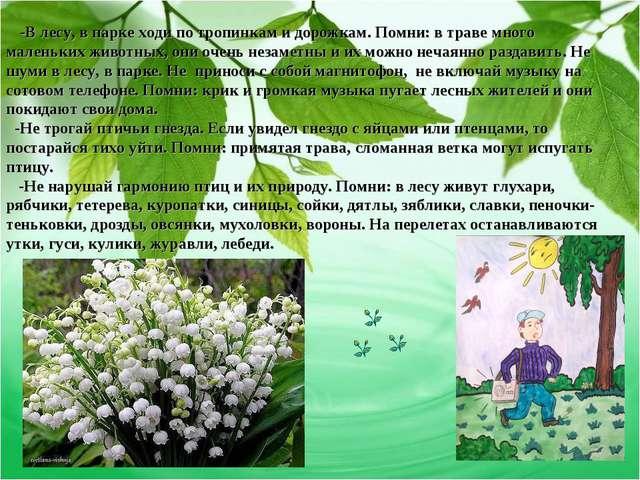 -В лесу, в парке ходи по тропинкам и дорожкам. Помни: в траве много маленьки...