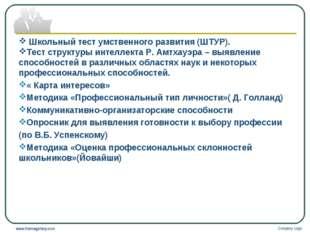 Company Logo www.themegallery.com Школьный тест умственного развития (ШТУР).
