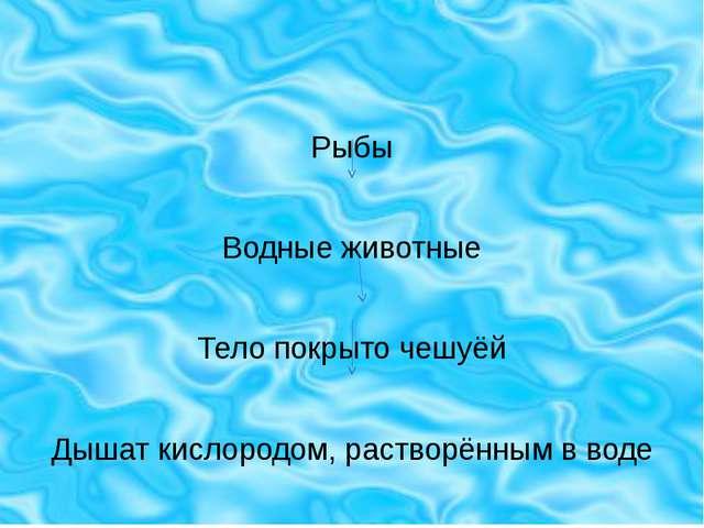 Рыбы Водные животные Тело покрыто чешуёй Дышат кислородом, растворённым в воде