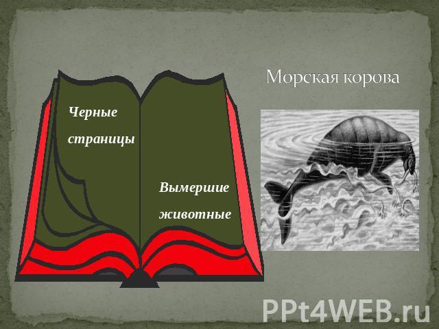 http://ppt4web.ru/images/150/12296/640/img12.jpg