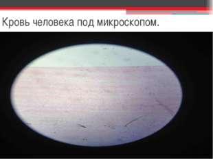 Кровь человека под микроскопом.