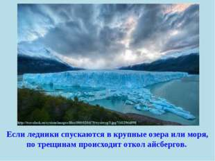 Если ледники спускаются в крупные озера или моря, по трещинам происходит отко