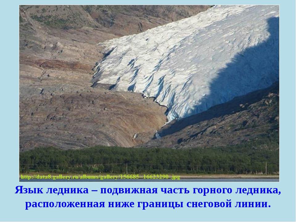 Язык ледника – подвижная часть горного ледника, расположенная ниже границы сн...