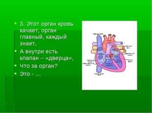3. Этот орган кровь качает, орган главный, каждый знает, А внутри есть клапан
