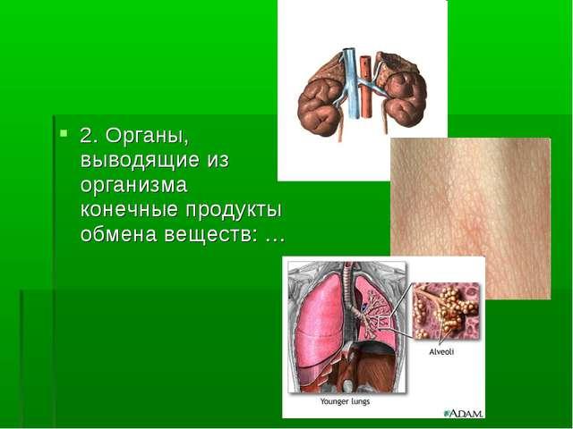 2. Органы, выводящие из организма конечные продукты обмена веществ: …