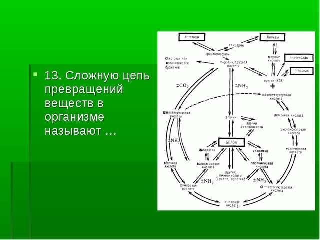 13. Сложную цепь превращений веществ в организме называют …