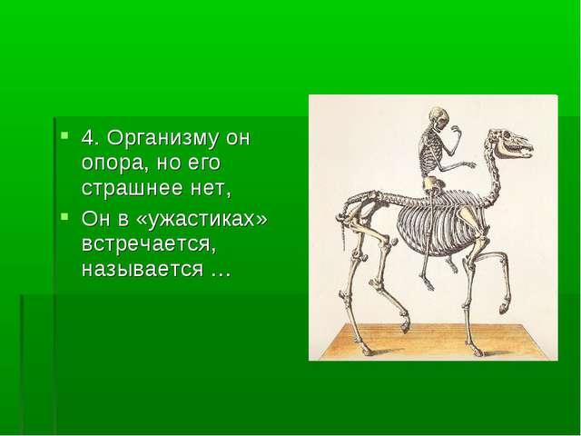 4. Организму он опора, но его страшнее нет, Он в «ужастиках» встречается, наз...