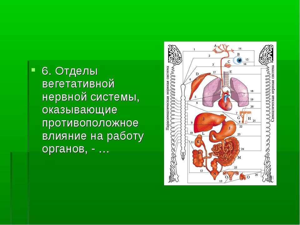 6. Отделы вегетативной нервной системы, оказывающие противоположное влияние н...