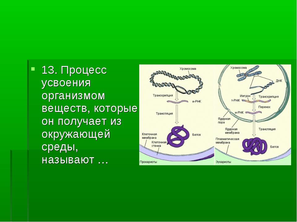 13. Процесс усвоения организмом веществ, которые он получает из окружающей ср...