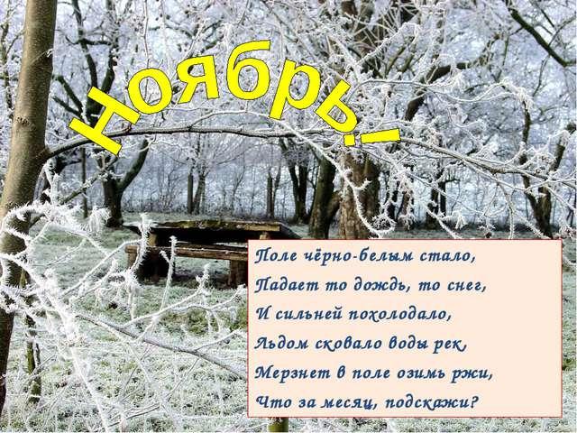 Поле чёрно-белым стало, Падает то дождь, то снег, И сильней похолодало, Льдом...
