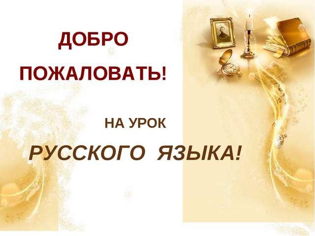 ДОБРО ПОЖАЛОВАТЬ! НА УРОК РУССКОГО ЯЗЫКА!