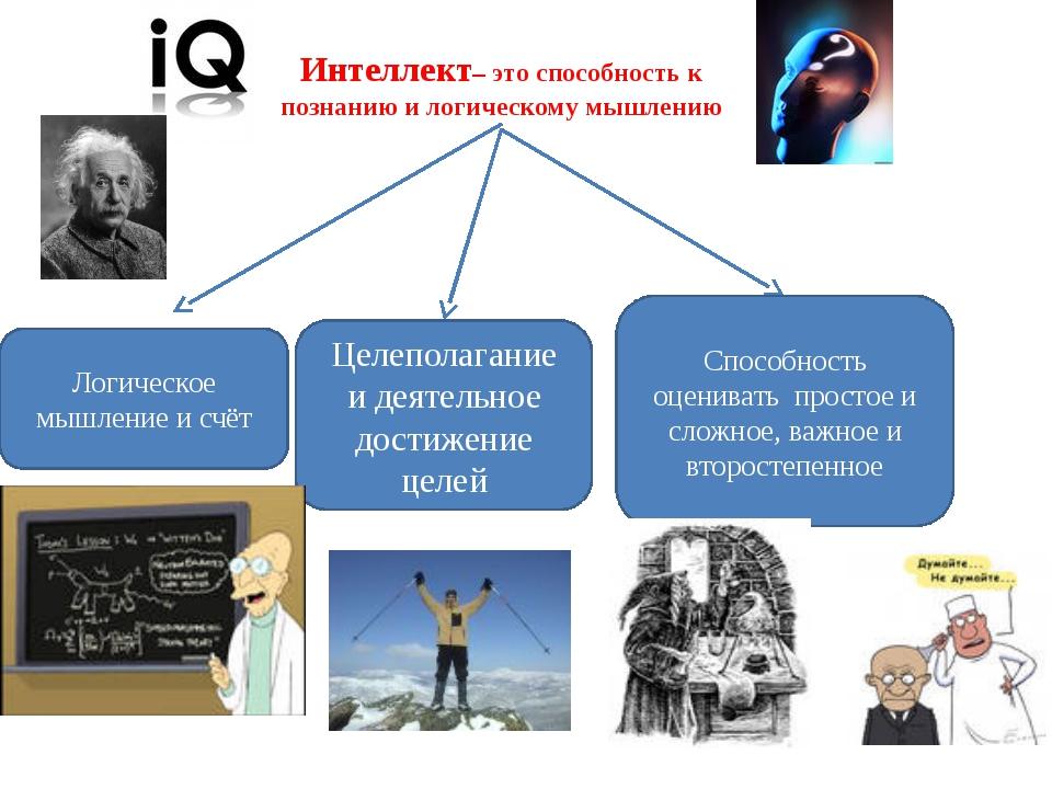 Интеллект– это способность к познанию и логическому мышлению Логическое мышле...