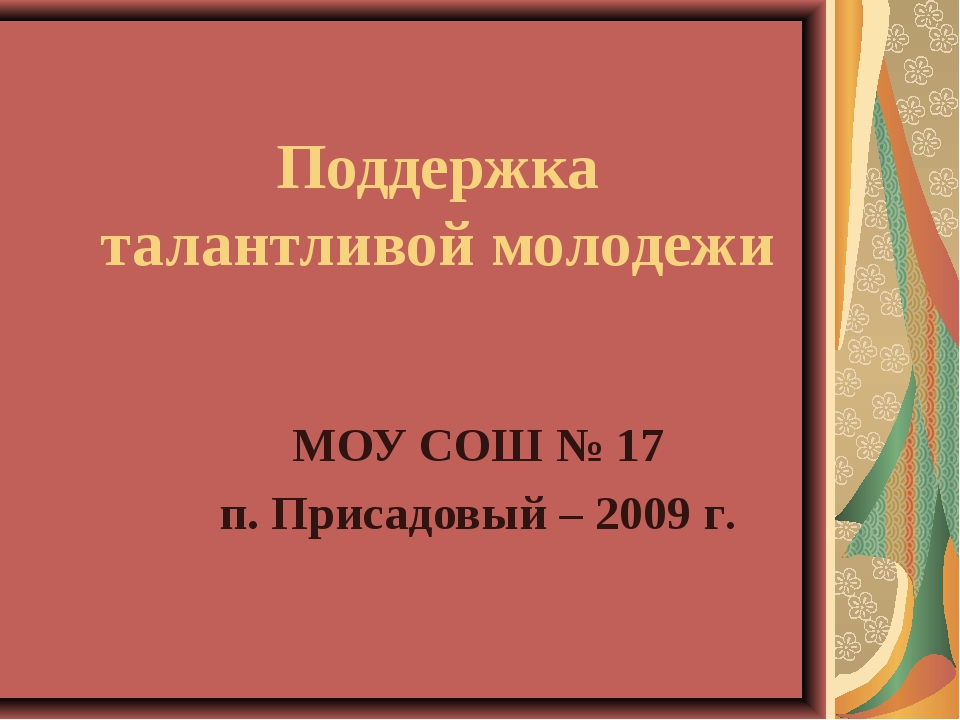 Поддержка талантливой молодежи МОУ СОШ № 17 п. Присадовый – 2009 г.