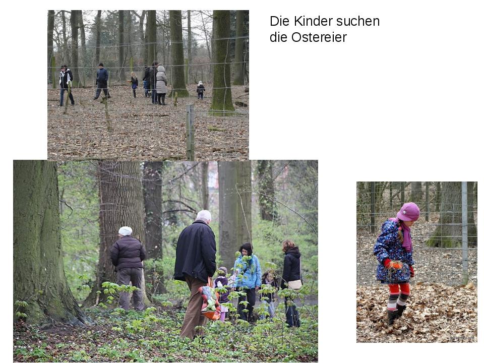 Die Kinder suchen die Ostereier