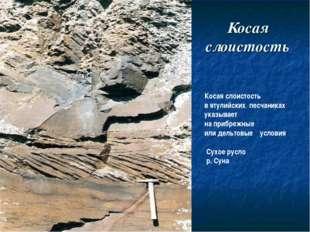 Косая слоистость Косая слоистость в ятулийских песчаниках указывает на прибре