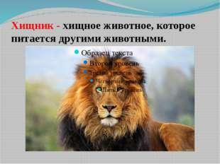 Хищник - хищное животное, которое питается другими животными.