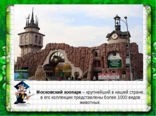 Московский зоопарк – крупнейший в нашей стране, в его коллекции представлены