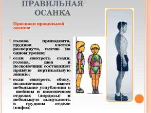 ПРАВИЛЬНАЯ ОСАНКА голова приподнята, грудная клетка развернута, плечи- на одн