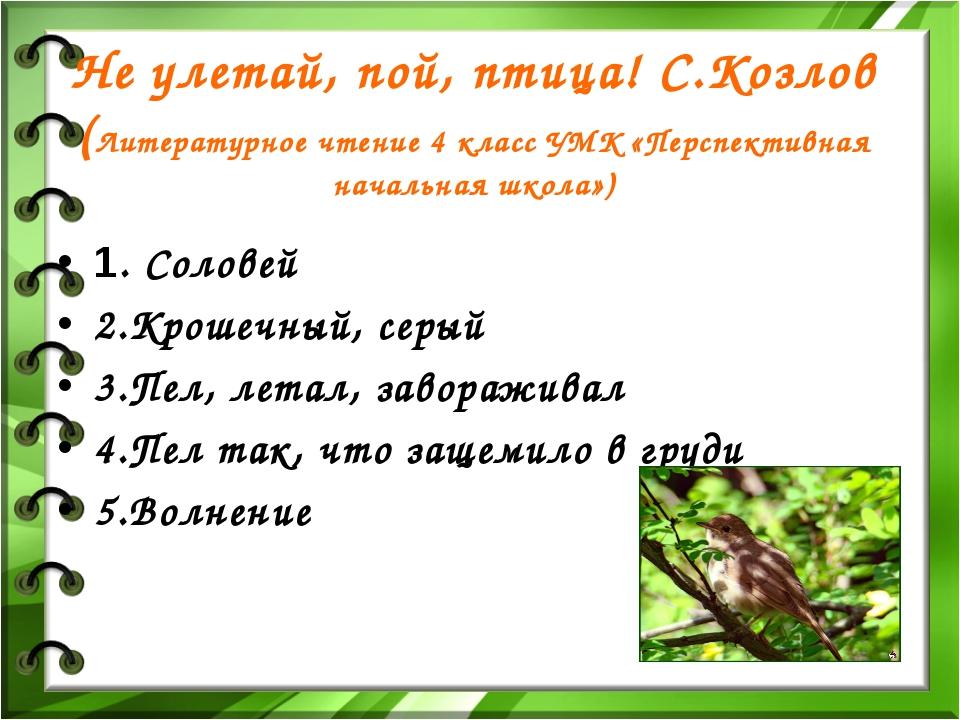 Не улетай, пой, птица! С.Козлов (Литературное чтение 4 класс УМК «Перспективн...