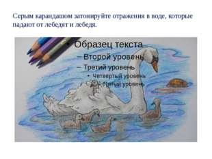 Серым карандашом затонируйте отражения в воде, которые падают от лебедят и ле