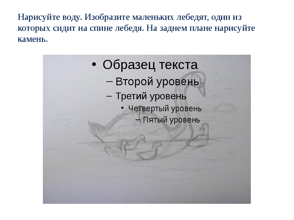 Нарисуйте воду. Изобразите маленьких лебедят, один из которых сидит на спине...