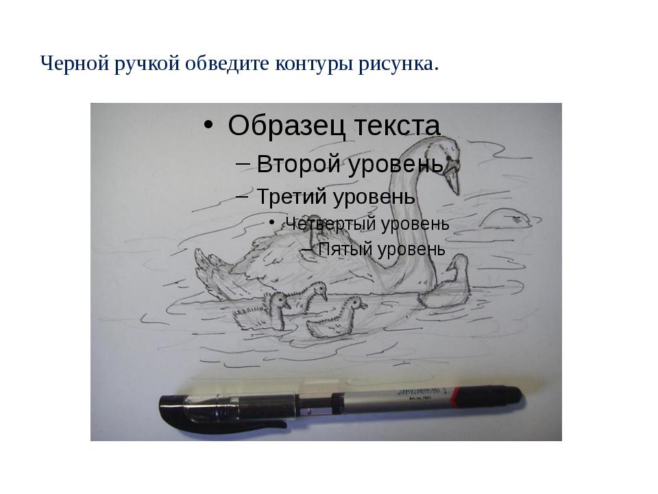 Черной ручкой обведите контуры рисунка.