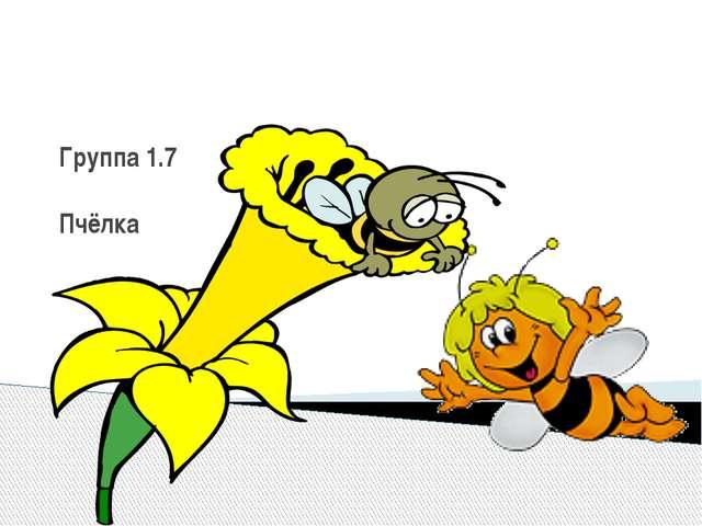 Группа 1.7 Пчёлка